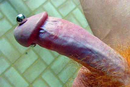 Perforado en el pene